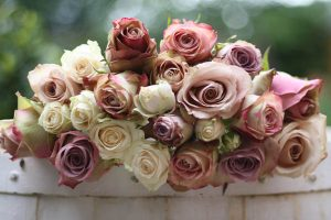 Mix of dusky pink roses