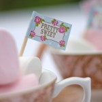 vintage country canape cake flags