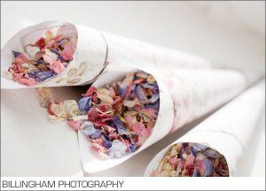 pink purple delphinium confetti