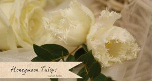button holes cream honeymoon tulips