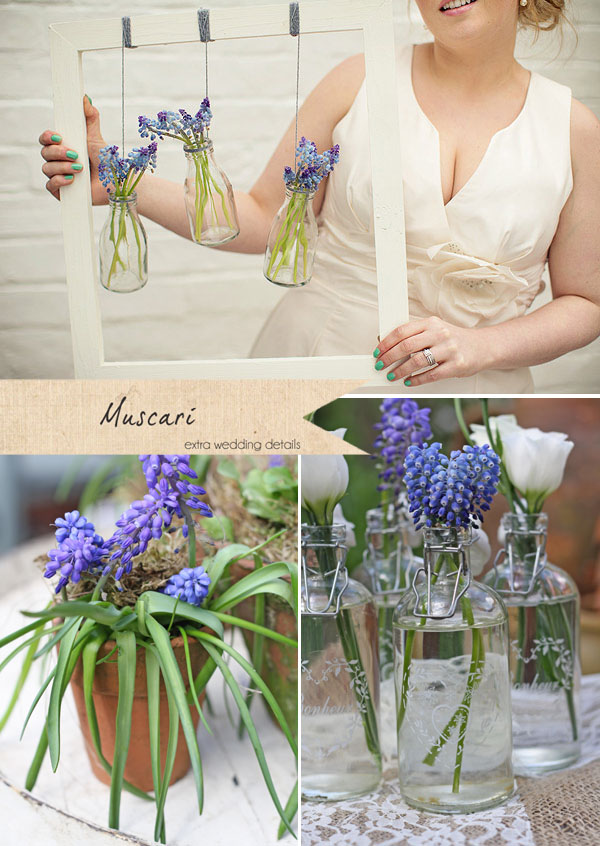 blue wedding flowers muscari grape hyacinth