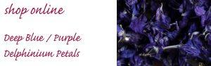 confetti petals blue purple