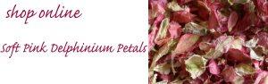 confetti petals pink