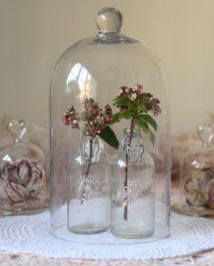 glass bell jar cloche