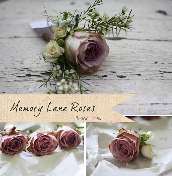 memory lane roses button holes dusky pink