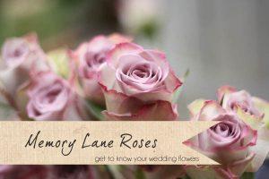 memory lane roses wedding flowers