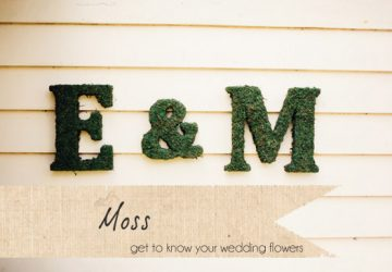moss wedding letters