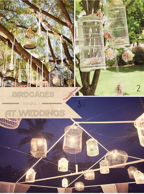 hanging birdcages at weddings