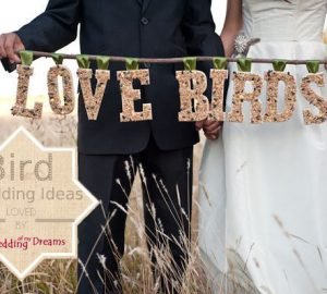 love bird wedding