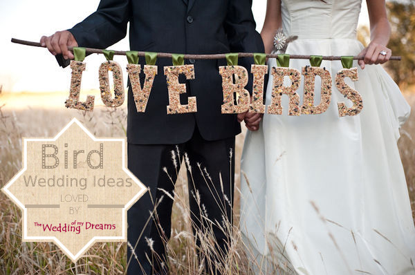 love bird wedding