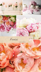peonies wedding flowers pink colours