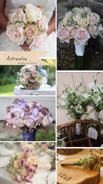 astrantia wedding bouquets