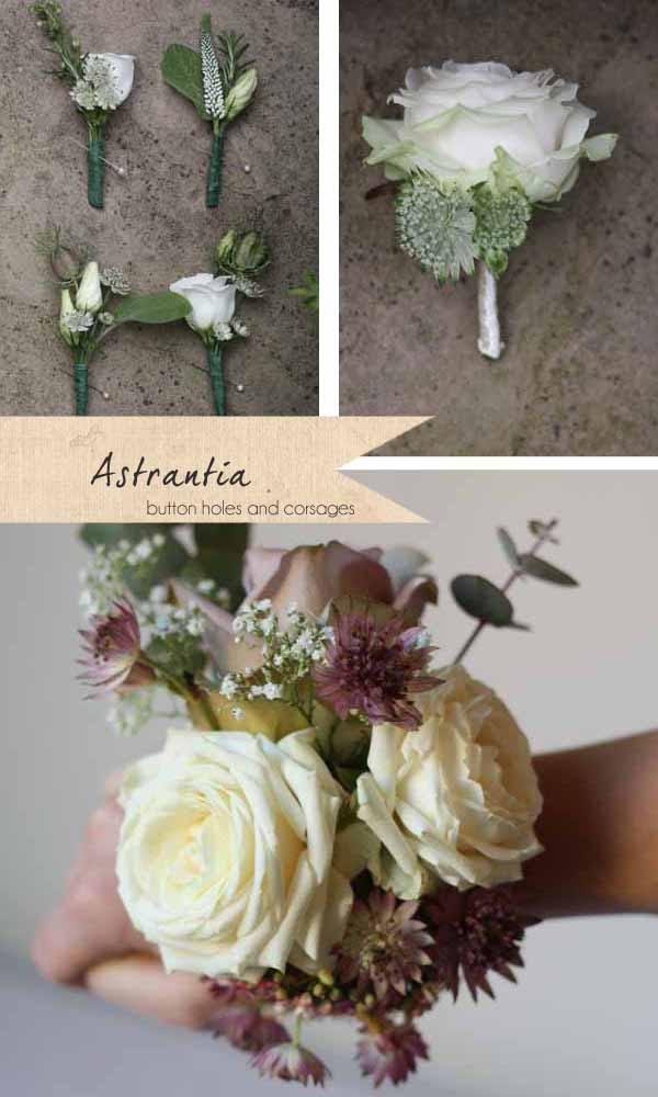 astrantia wedding buttonholes and wrist corsages