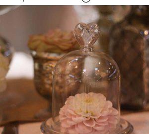 mini glass dome bell jar