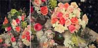 pink peach roses wedding flowers
