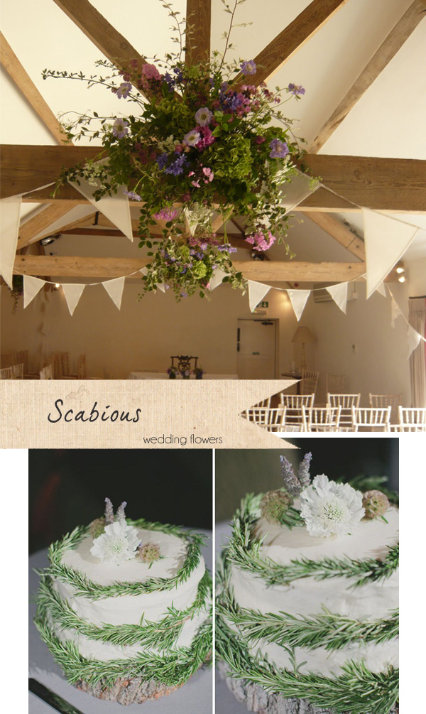 scabious wedding flowers cake flowers hanging flowers