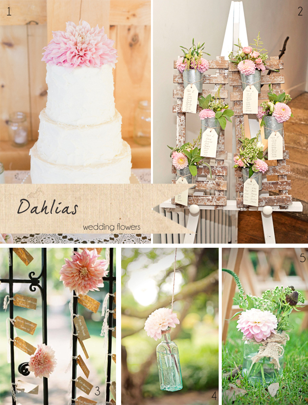 dahlias pink wedding flowers cake flowers hanging bottles