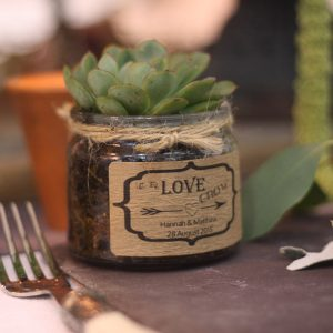wedding favour stickers for succulents let the love grow stickers