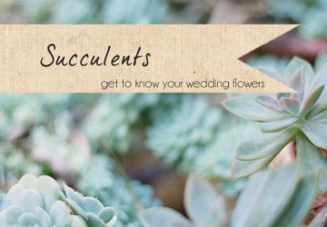 succulents wedding flowers