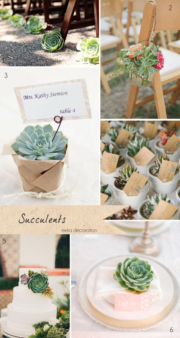 succulents wedding flowers favours cake decorations ceremony aisle decorations