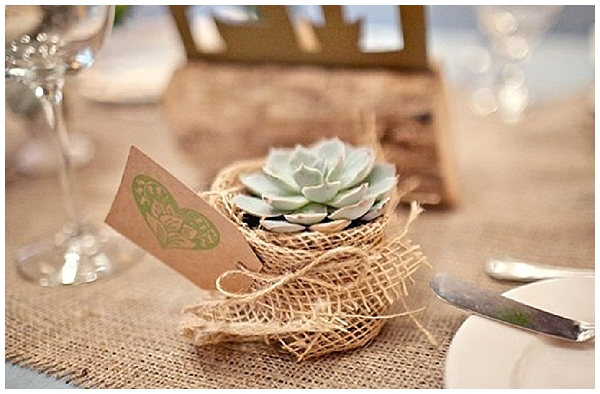 hessian wedding ideas succulent wedding favours