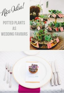 potted pants wedding favours