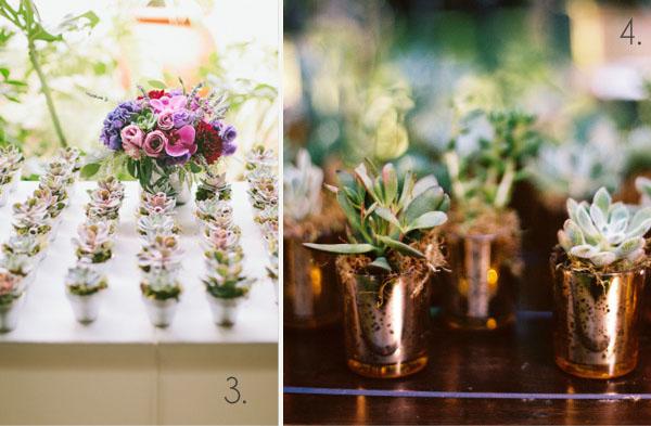 succulents wedding favours