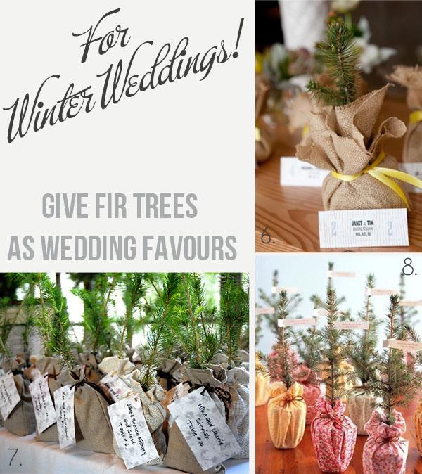 winter wedding favours fir trees