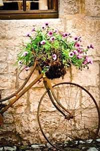rest a bike with the basket full of wild flowers for an english country garden wedding