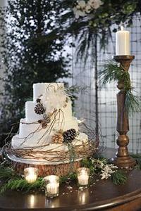winter wedding cake rustic
