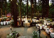 woodland wedding centrepiece ideas outdoor forest wedding