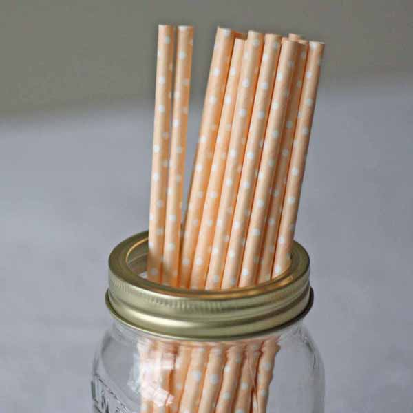peach and white spotted paper straws for drinks