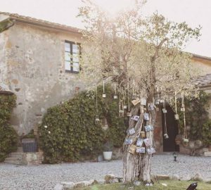 Family tree photo display wedding Italy
