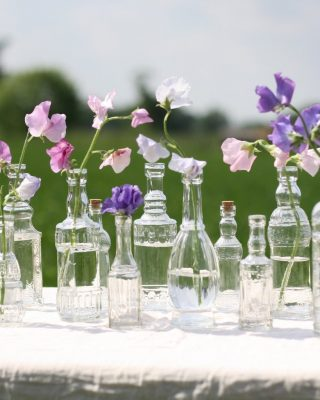 Glass_bottle_vases_with_cork_stopper