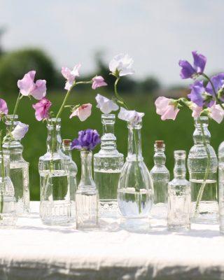 Glass_bottle_vases_with_cork_stopper